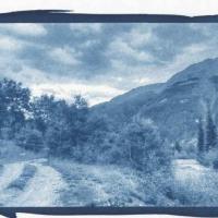 Cyanotype Mineral Creek