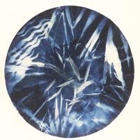 Cyanotype-Filter1