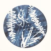 Cyanotype-Filter2