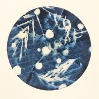 Cyanotype-Filter6