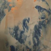 Cyanotype-Over-Lumen-Jose
