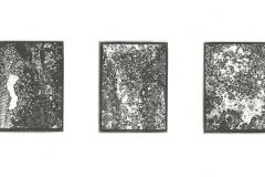 Palladium triplet P01
