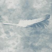 Bleached-Cyanotype_DearJohnDoe_12
