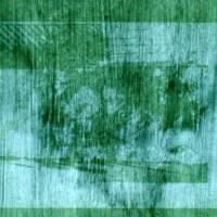 Anthotype-Spirulina-2