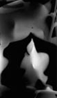 Photograms-Torched