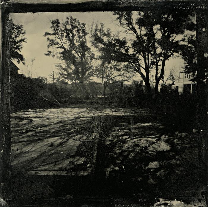 Wetplate collodion Foundation Vista Overgrowth Pass