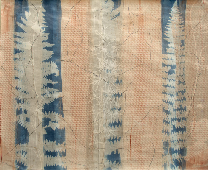 Cyanotype-abstract-At-One-2015
