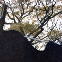 Gum over cyanotype Black Sweatshirt