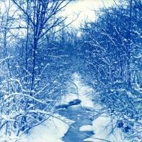 Cyanotype Snowy Creek