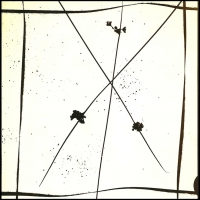 Photogram Sedge