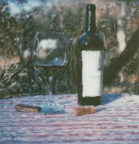 Polaroid SX-70 Broken glass staglin 1