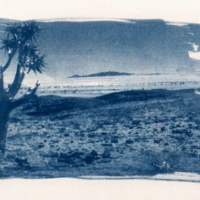 Cyanotype Naukluft