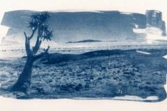 Cyanotype Naukluft