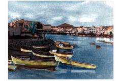 Toned Cyanotype Areciffe