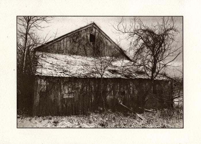 Kallitype Prairie Oaks Winter 1
