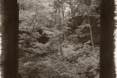 Kallitype Cedar Falls 1