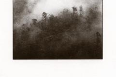 Kallitype Radiant Range Fog 1