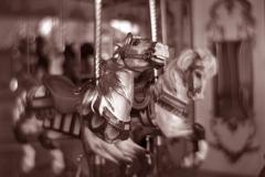 Gum over platinum palladium carousel 3