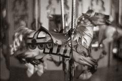 Gum over platinum palladium carousel 4