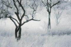 Lithprint Untitled b2