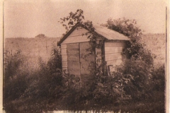 Cyanotype toned Garden shack