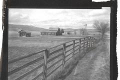 Ziatype Mission Valley Farm
