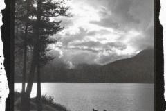 White Swan Lake