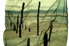 Polaroid emulsion lift Beach