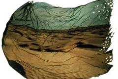 Polaroid emulsion lift Desert