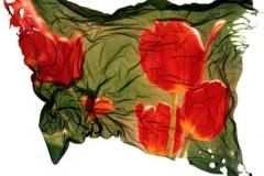 Polaroid emulsion lift Tulips
