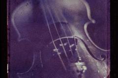 Polaroid transfer Violin
