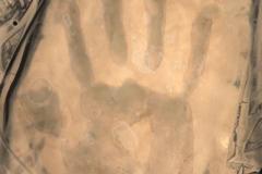 Sabbatier effect Hand