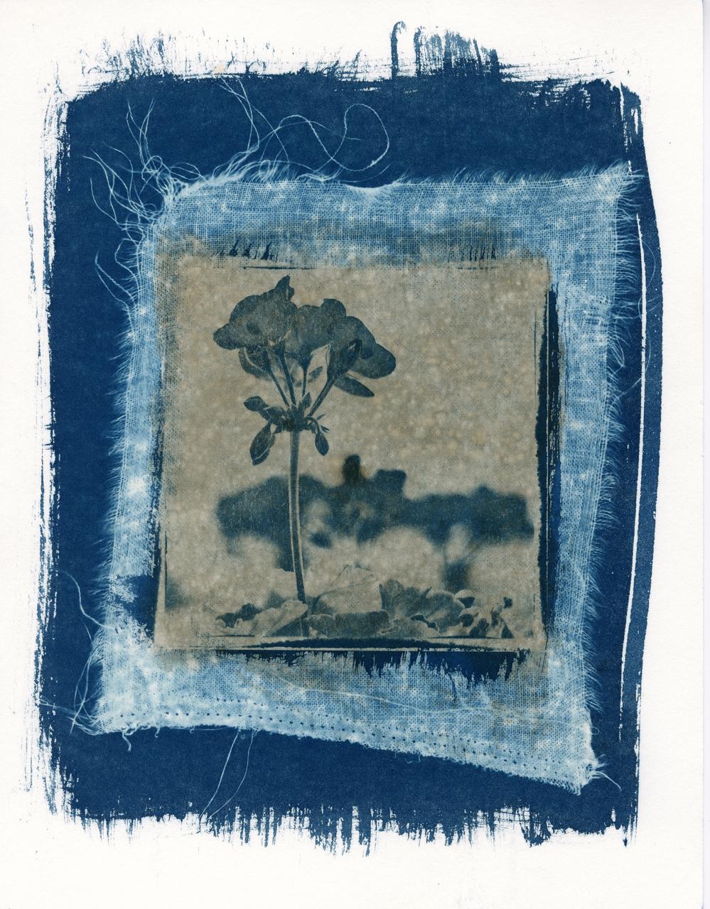Cyanotype channeling Rothko 3