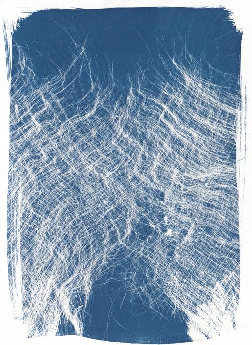 Bleu-Noë-France-Palm-skin-02