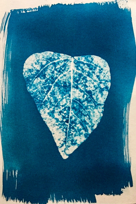 Emma-Perry-Australia-Ocean-Leaf