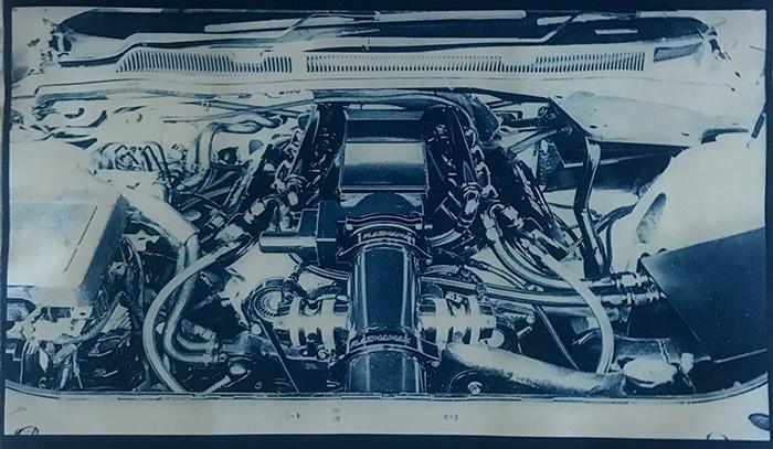 Gaja-Grieves-Australia-Engine