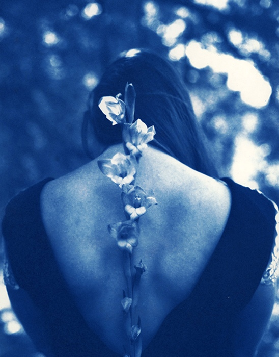 Jaime-Aelavanthara-USA-Gladiolus-for-Remembrance