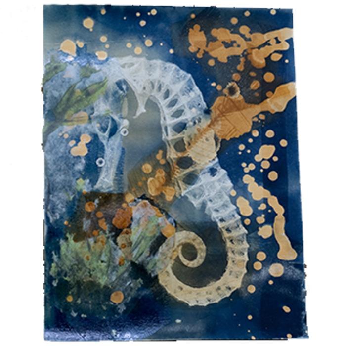 Kaylie-Sheffield-USA-Sea-Animal