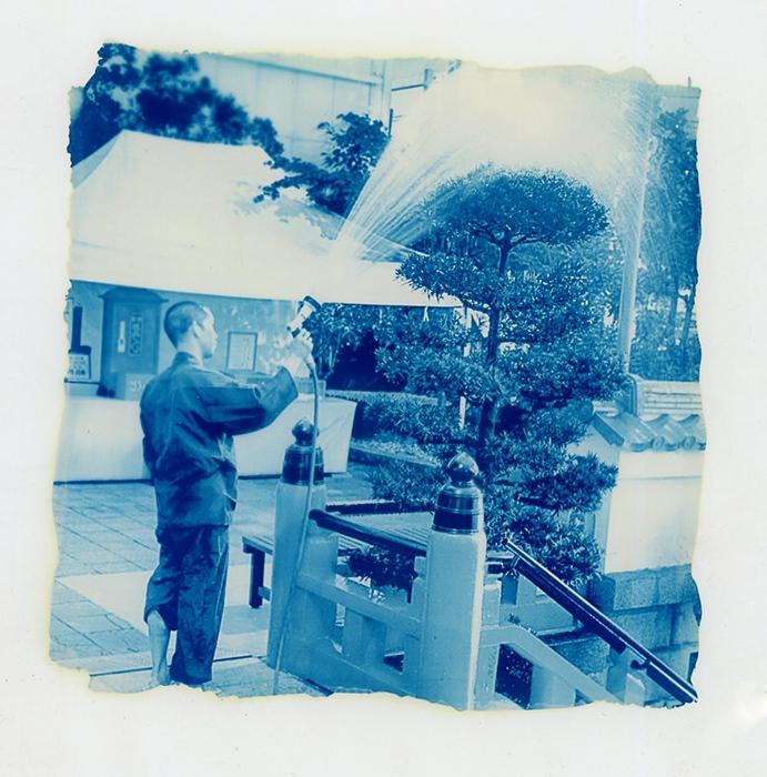 Ricardo-de-Oliveira-Brazil-Treewatermonk