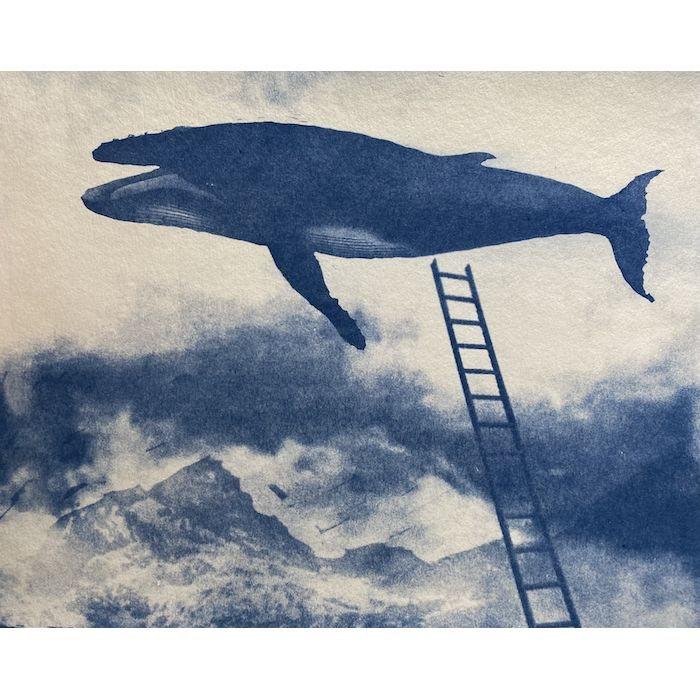 Daniel-Smith-USA-Flying-Bluewhale