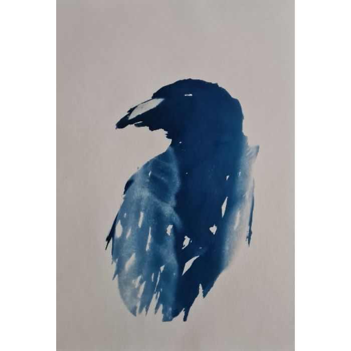 Edward-Martin-United-Kingdom-Crow