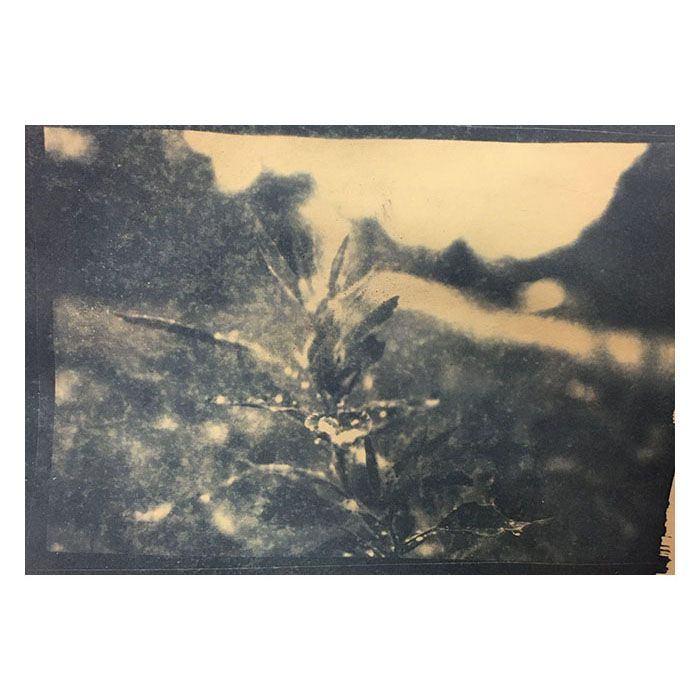 Elouise-Hollway-UK-Water-Droplets