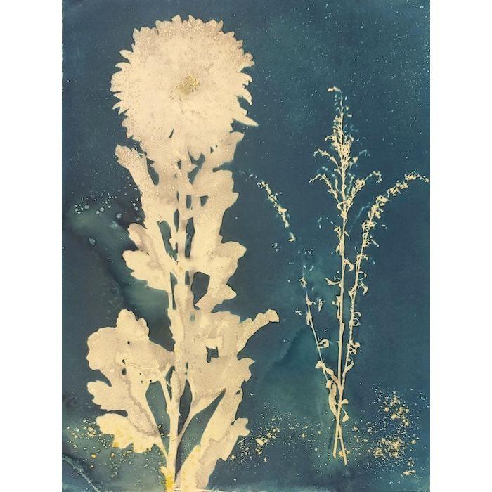 Jacqueline-Donaldson-Hong-Kong-Big-Flower