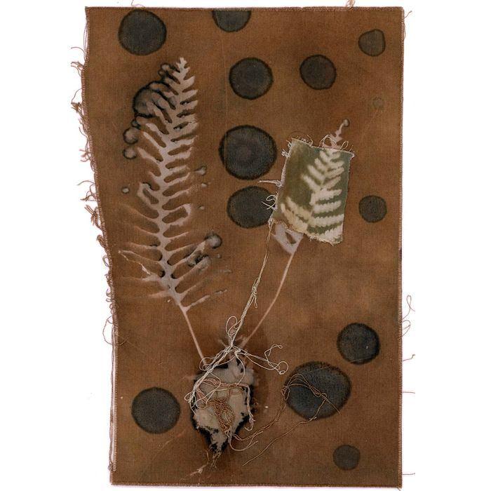 Karen-Bullock-USA-Resurrection-Ferns-with-plant-dyes