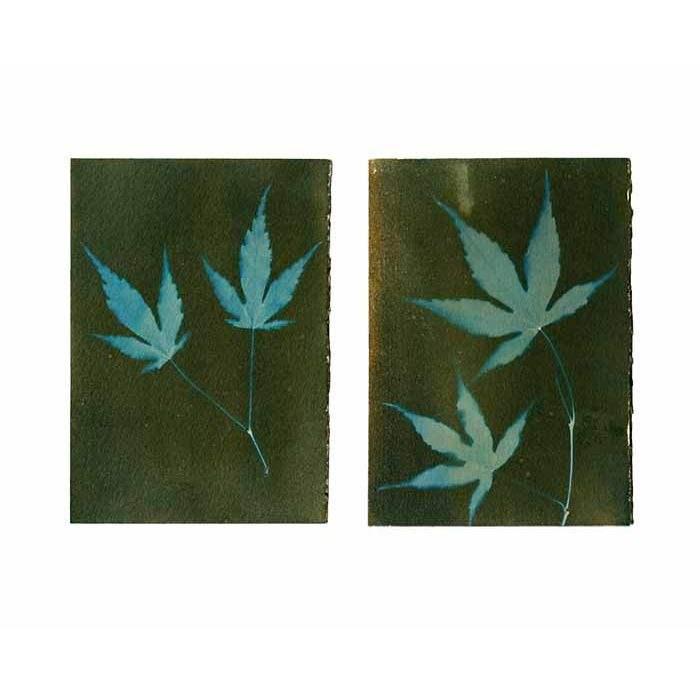 Krista-McCurdy-USA-Maple-Leaf-Duo