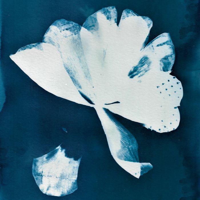 Laura-Jayne-Furner-England-Last-Tulip