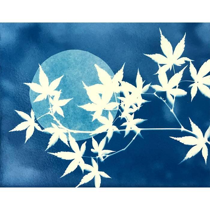 Lisa-Edwards-UK-New-Moon