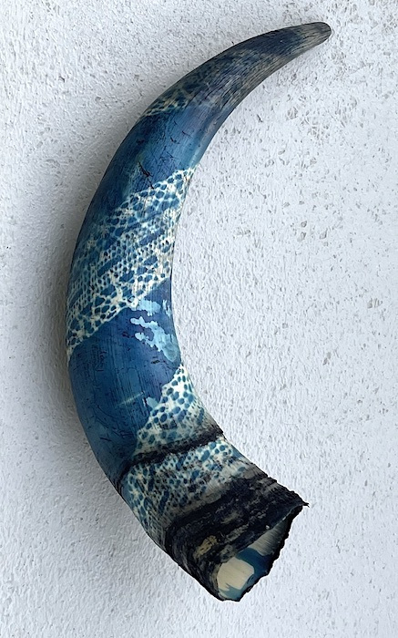 Louise-Krasniewicz-USA-Horn