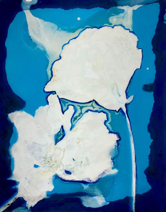 Nikki-Gardner-USA-Blue-Poem