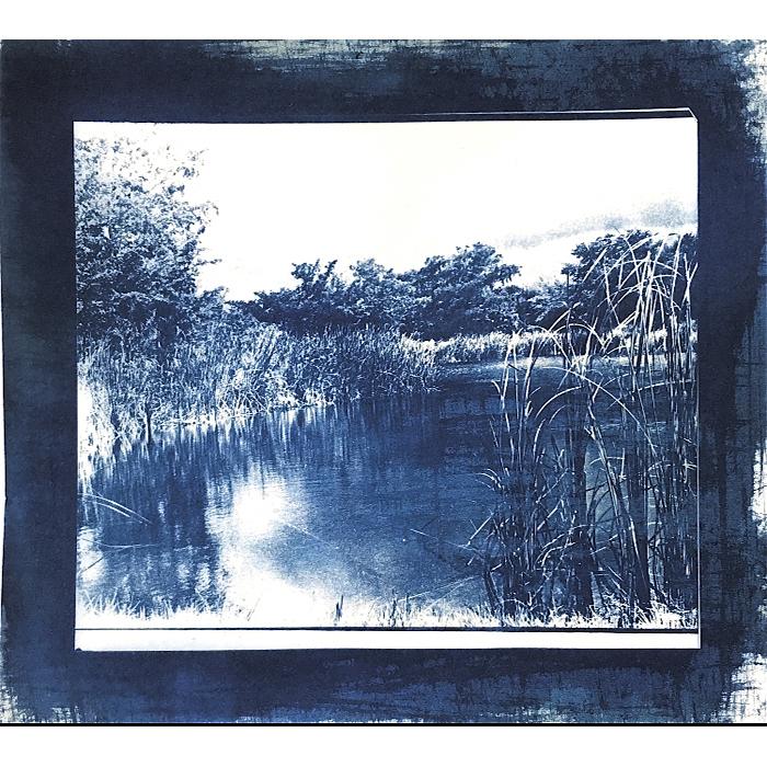 Theresa-Afcha-USA-Blue-Pond